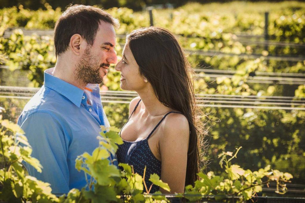 Fotos en viñedos